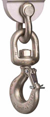 EDxtreme Crane Scales - Basic Swivel Hook